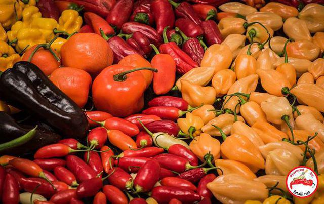 Now 10% discount for chili pepper seeds from