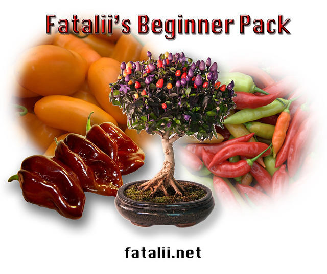 Fataliis Beginner Pack